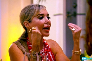 real-housewives-of-miami-season-2-gallery-episode-214-24