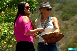 Yolanda Foster and Kyle Richards collecting lemons (from Bravo's photo gallery)